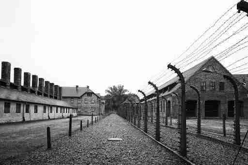 Immagine del campo di concentramento di Auschwitz  photo credit: tgabruzzo.com