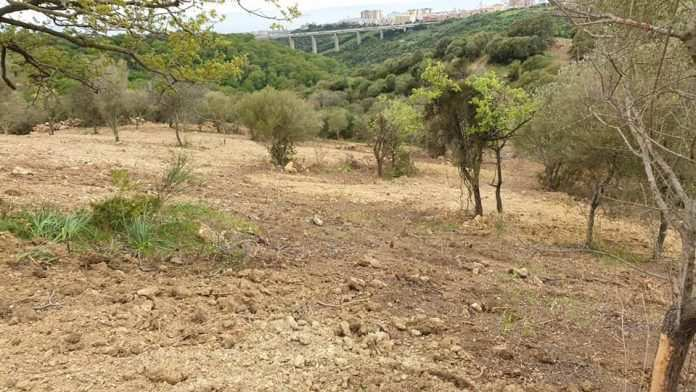 Valle dell'Infernaccio, il WWF Litorale Laziale lancia l'allarme sull'area verde